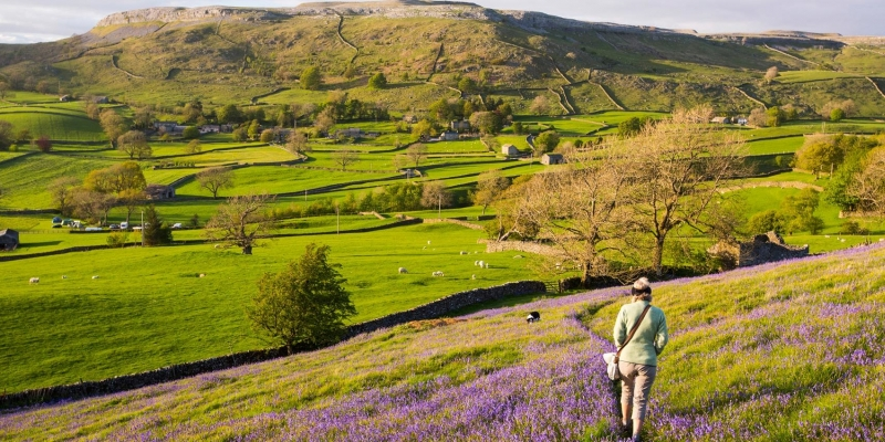 The magical British countryside